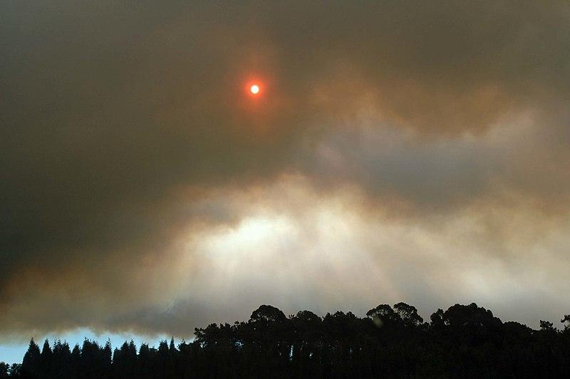 Imagem:Fire Portugal summer2005.jpg