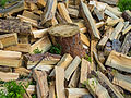 Firewood around a tree stump.jpg