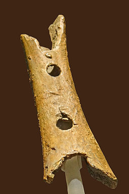 A pierced cave bear bone, possibly a flute, from Divje Babe Flute paleolithique (musee national de Slovenie, Ljubljana) (9420310527).jpg