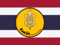 Flag of Provincial Scout.png
