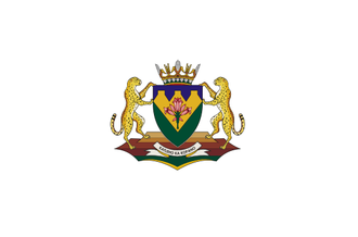 Flag of the Free State Province.png