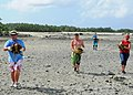 Flickr - Official U.S. Navy Imagery - Volunteers carry turtles for marine biologists..jpg