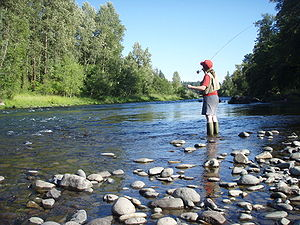 Sweet Home, Oregon - Fly fishing on the South Santiam River near Sweet Home