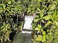 Fonte Dam located near Nimitz Hill on Guam.jpg