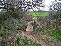 Footbridge at Park Pale. - geograph.org.uk - 1802476.jpg