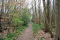 Footpath, Great Britain's Wood - geograph.org.uk - 1255933.jpg