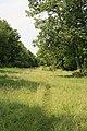 Footpath along River Ebble at Bishopstone - geograph.org.uk - 196681.jpg