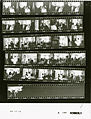 Ford A0186 NLGRF photo contact sheet (1974-08-16)(Gerald Ford Library).jpg