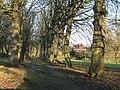 Former drive to 'Lansdowne' - geograph.org.uk - 2227796.jpg