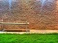GRASS (HDR) - Flickr - radiant guy.jpg