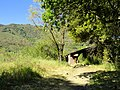 Garland Ranch Regional Park - Carmel Valley, CA - DSC06847.JPG