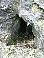 Gawra pod Granią otwór.jpg