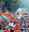 A crowd of people, some waving rainbow flags or holding placards