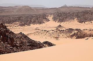 Tibesti-Jebel Uweinat montane xeric woodlands desert ecoregion in Africa