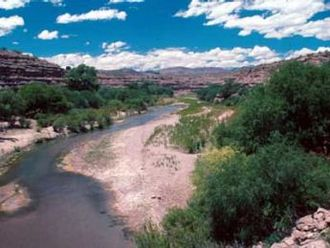 Gila River - The river in the Gila Box Canyon in eastern Arizona