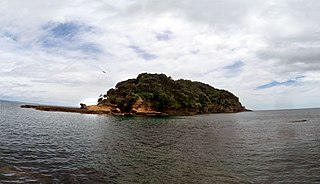 Goat Island (Auckland) tiny island in New Zealand north of Auckland