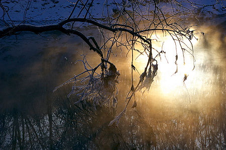 Sun is reflected in misty river