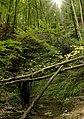 Goldloch Schlattstall.jpg
