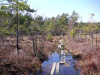 Gömmaren Nature Reserve - Gömmaren Nature Reserve