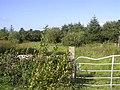 Gortnahoula Townland - geograph.org.uk - 1482350.jpg