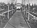 Gräberfeld der Tübinger Soldaten des 1. Weltkriegs auf dem Stadtfriedhof ca.1921 (TGV051).jpg