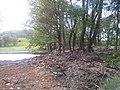 Grafenried - panoramio (20).jpg