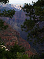 Grand Canyon Widforss trail. 13.jpg