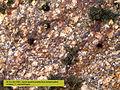 Granite porphyrique métamorphisé.jpg