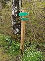 Green hiking trail marker in Gullmarsskogen.jpg