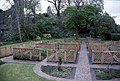 Greyabbey, the herb garden - geograph.org.uk - 68051.jpg