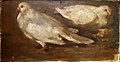 HENRIQUE BERNARDELLI (1858 - 1936), Pombas, óleo sobre tela sobre cartão, 18,3 x 36 cm, Photo Gedley Belchior Braga.jpg