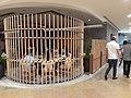HK 金鐘 Admiralty 金鐘道 Queensway 太古廣場 Pacific Place mall 北京樓 Peking Garden Restaurant May 2020 SS2 03.jpg