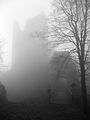 Haichenbach im Nebel 2.jpg