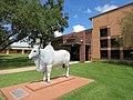 Hallettsville TX ISD Admin.jpg