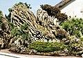 Hangzhou, Botánico 1978 17.jpg