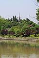 Hangzhou Zhakou Bai Ta 20120518-17.jpg