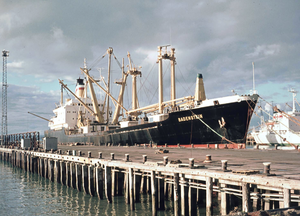 Port of Napier - Hapag-Lloyd cargo ship MV Badenstein in Napier Port in 1974