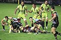 Harlequins vs Saints 2013 EP (1).jpg