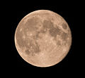 Harvest Moon September 9 2014.jpg