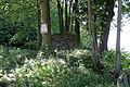 Harzfeld.jpg