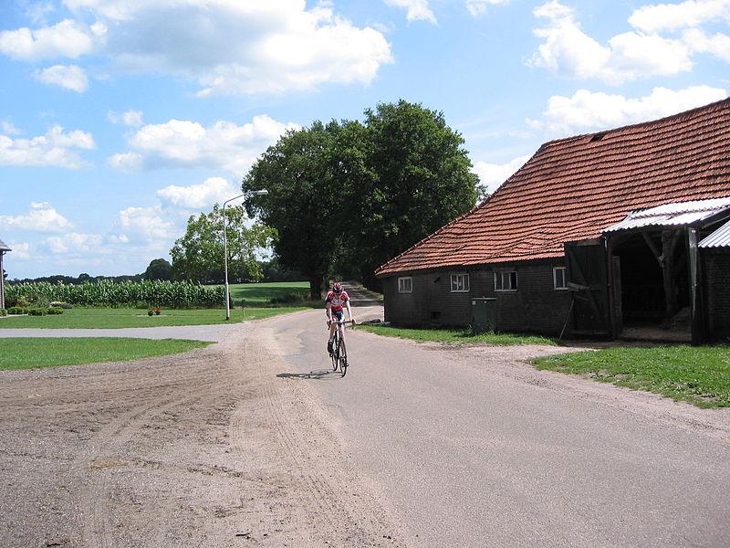 Bestand:Hazeldonkseweg met wielrenner juli 2009.jpg