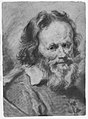 Head of a Bearded Man MET 271244.jpg