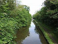 Heading North on the Shropshire Union Canal - geograph.org.uk - 438857.jpg