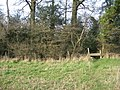 Here is the footpath - geograph.org.uk - 1240598.jpg