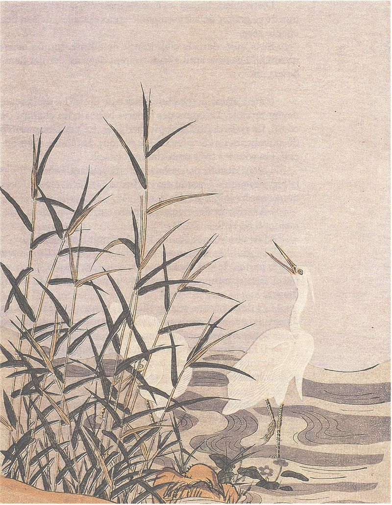 navigator hyakunin isshu one hundred poets one poem each heron and reed by suzuki harunobu photo