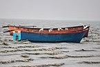 Herons on a small boat in guliakhali sea beach 19-01-2019.jpg