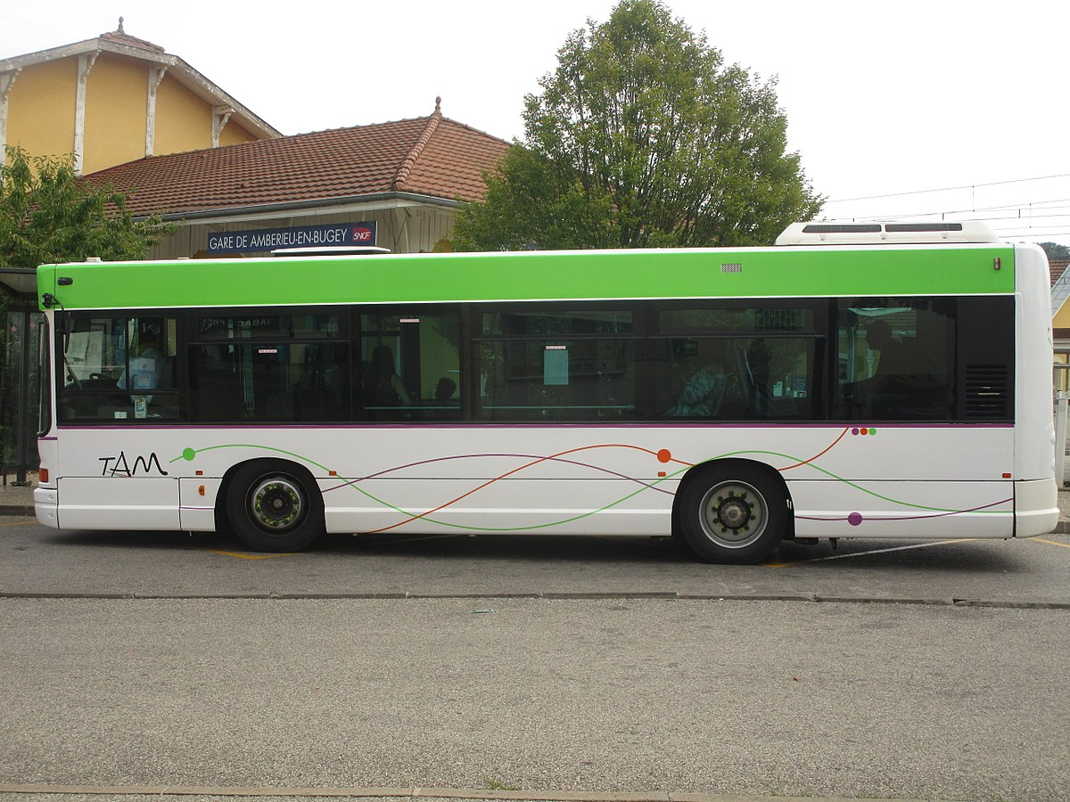 Tam Car Services Clarkston Ga