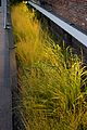 High Line, New York 2012 66.jpg