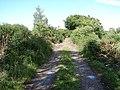 High Moor of Killiemore - geograph.org.uk - 862426.jpg