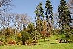 High Park, Toronto DSC 0229 (17393625985).jpg